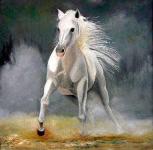 aznar cheval